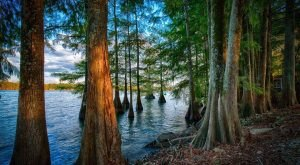 These 13 Mind-Blowing Sceneries Totally Define Louisiana
