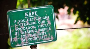 17 Words And Phrases Only People From Hawaii Will Understand