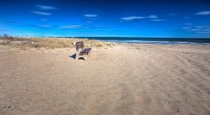 10 Little Known Beaches In New Hampshire That'll Make Your Summer Unforgettable