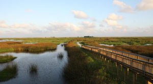13 Marvels In Louisiana That Must Be Seen To Be Believed