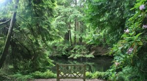 This Little Known Natural Oasis Is Hiding In Washington…And You're Going To Love It