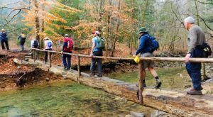 These 7 Trails In Alabama Will Lead You To Unforgettable Places