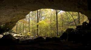 Hiking To This Aboveground Cave In Arkansas Will Give You A Surreal Experience