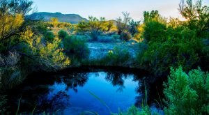 This Little Known Natural Oasis Is Hiding In Nevada… And You're Going To Love It