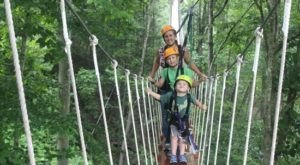 This Canopy Walk In Tennessee Will Make Your Stomach Drop