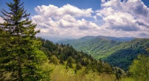 These 7 Beautiful Byways In Tennessee Are Perfect For A Scenic Drive