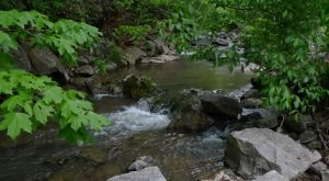 This Little Known Natural Oasis Is Hiding In Kentucky… And You're Going To Love It