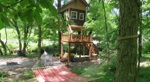 This Treehouse In Illinois Will Give You An Unforgettable Experience