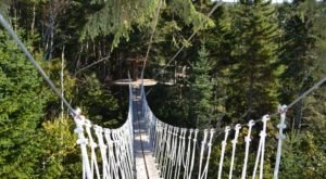 This Canopy Walk In New Hampshire Will Make Your Stomach Drop
