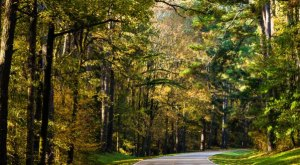 These 9 Beautiful Byways In Mississippi Are Perfect For A Scenic Drive