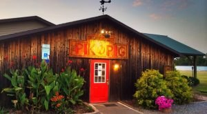 Dining At This One BBQ Joint In North Carolina Will Give You An Unforgettable Experience