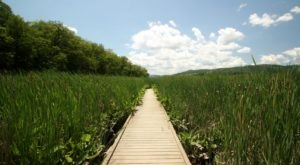 9 Boardwalks In New York That Will Make Your Summer Awesome