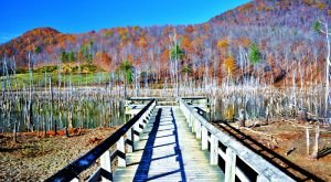 9 Boardwalks In West Virginia That Will Make Your Summer Awesome