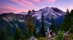12 Undeniable Reasons Why Washington Will Always Be Home