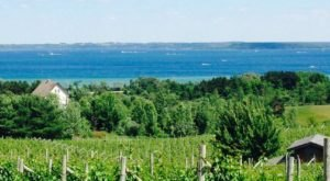 This Trail Through Michigan's Gorgeous Wine Country Is Truly Unforgettable
