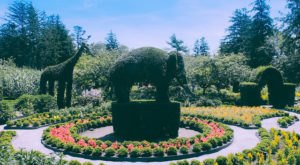 There's A Little Known Unique Garden In Rhode Island… And It's Truly Amazing