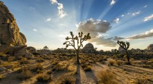 8 Marvels In Southern California That Must Be Seen To Be Believed