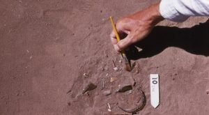 6 Things Archaeologists Discovered In Oregon That Will Astound You