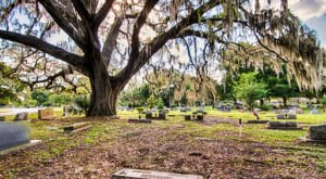 These 10 Haunted Cemeteries In Florida Are Not For The Faint Of Heart