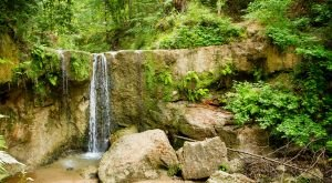 Everyone in Mississippi Must Visit This Epic Natural Spring As Soon As Possible