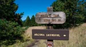 10 Once-In-A-Lifetime Adventures You Can Only Have In Arizona