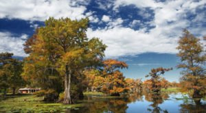You Haven't Lived Until You've Experienced This One Incredible Lake In Louisiana
