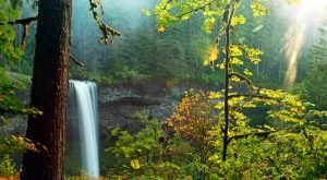 You Haven't Lived Until You've Experienced This One Incredible State Park In Oregon