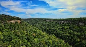 "The ""Grand Canyon Of The East"" Is Right Here In Alabama… And It's Spectacular"