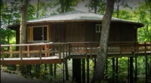 This Little Known Tree House In Kentucky Is The Perfect Place To Get Away From It All