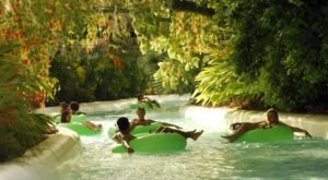 These 5 Waterparks Near Tampa Are Going To Make Your Summer AWESOME