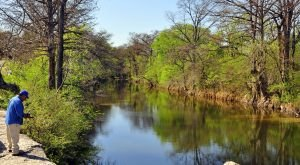 If You Live In Austin, You Must Visit This Amazing State Park