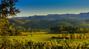 Take These 7 Byways In Northern California For An Unforgettable Scenic Drive