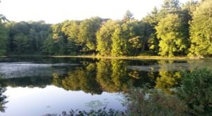 These 14 Excellent Hikes Are All Within 30 Minutes Of Downtown New Haven