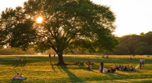 Here Are The 7 Safest And Most Peaceful Places To Live In Austin