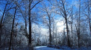 You May Not Like These Predictions About Kentucky's Positively Frigid Upcoming Winter