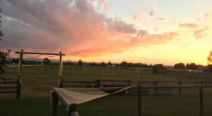 15 Photos That Perfectly Sum Up Montana In The Summer