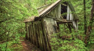 This Place Near Portland Is Being Reclaimed By Mother Nature