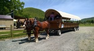 Ole' Covered Wagon Tours Will Show You Pennsylvania Like You Have Never Seen It Before