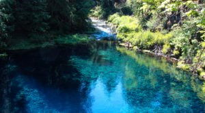 A Trip To The Bluest Lagoon In Oregon Will Make Your Summer Complete