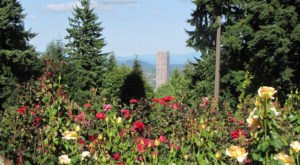 These 10 Unique Places in Portland Are An Absolute Must-See . . . And Soon!