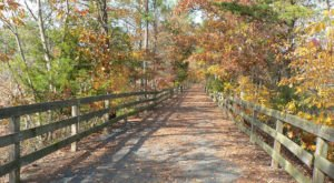 9 Magnificent Trails You Have To Hike In Delaware Before You Die