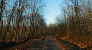 You Shouldn't Drive These 13 Most Haunted Roads In America At Night