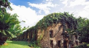 This Beautiful Mill Hiding In Hawaii Looks Like Something Out Of A Fairy Tale