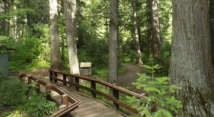 7 Boardwalks In Idaho That Will Make Your Summer Complete