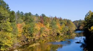 This Alabama River Is So Much More Than Just A Body Of Water