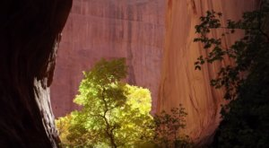 What's Hiding In Utah's Wilderness Is Truly Enchanting…And You'll Want Experience It