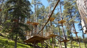 The Stomach Dropping Canopy Walk You Can Only Find In South Dakota