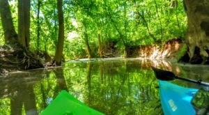 A Relaxing Float Down Uwharrie River Is The Perfect Way To Spend A Summer Day In North Carolina