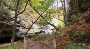 10 Easy Hikes To Add To Your Outdoor Bucket List In Illinois