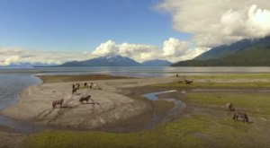We Dare You Not To Fall In Love With Juneau, Alaska After Watching This Incredible Video